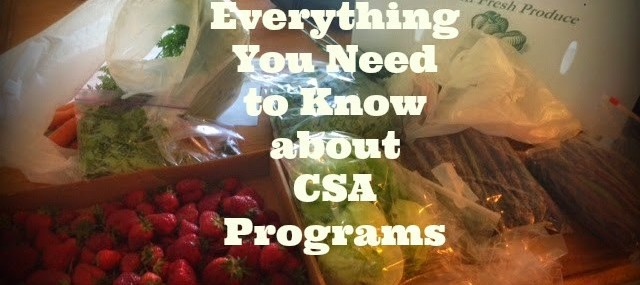 Everything You Need to Know about CSA Programs