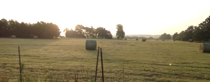Wordless Wednesday: Country Mornings