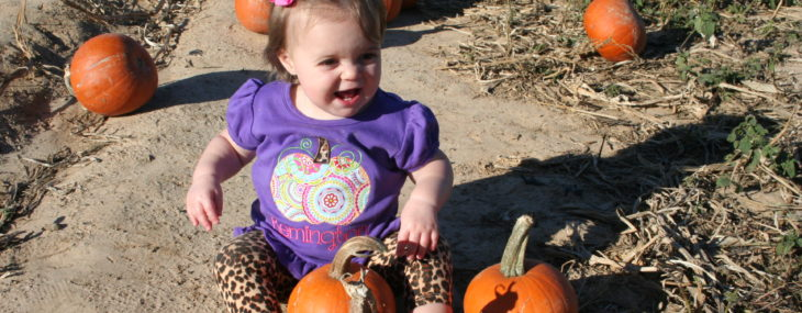 Cutest Pumpkin at the Patch